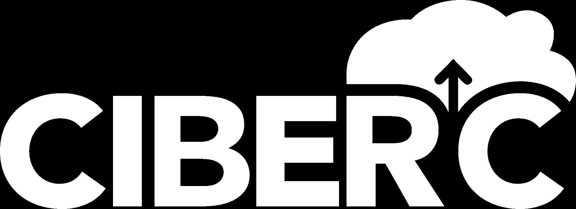 Newsletter CiberC